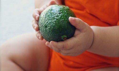 avocado-1476494_1920-min